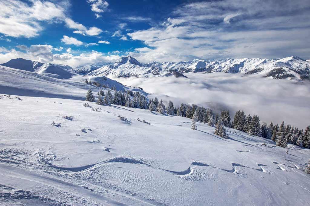 Clases esquí Molina y Masella