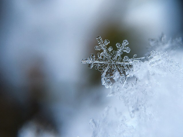 Adiós Otoño, bienvenido invierno